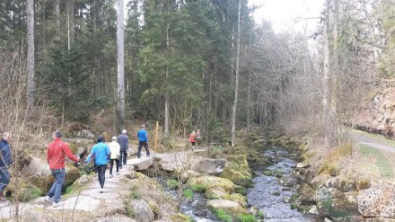 Walking in der Saußbachklamm