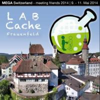 MEGA_Switzerland_LABSouvenir