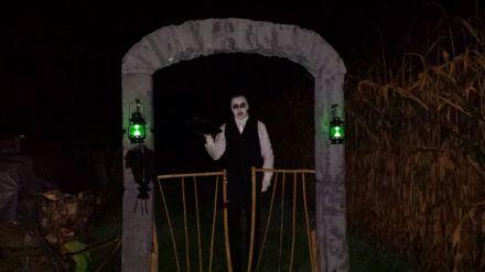 Portal-Schattenwesen